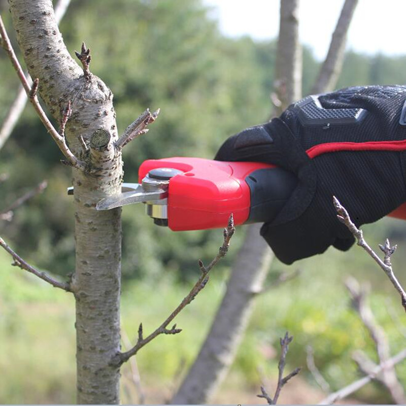 sentway 2AH portable cordless lithium pruning shear for cutting tree branches